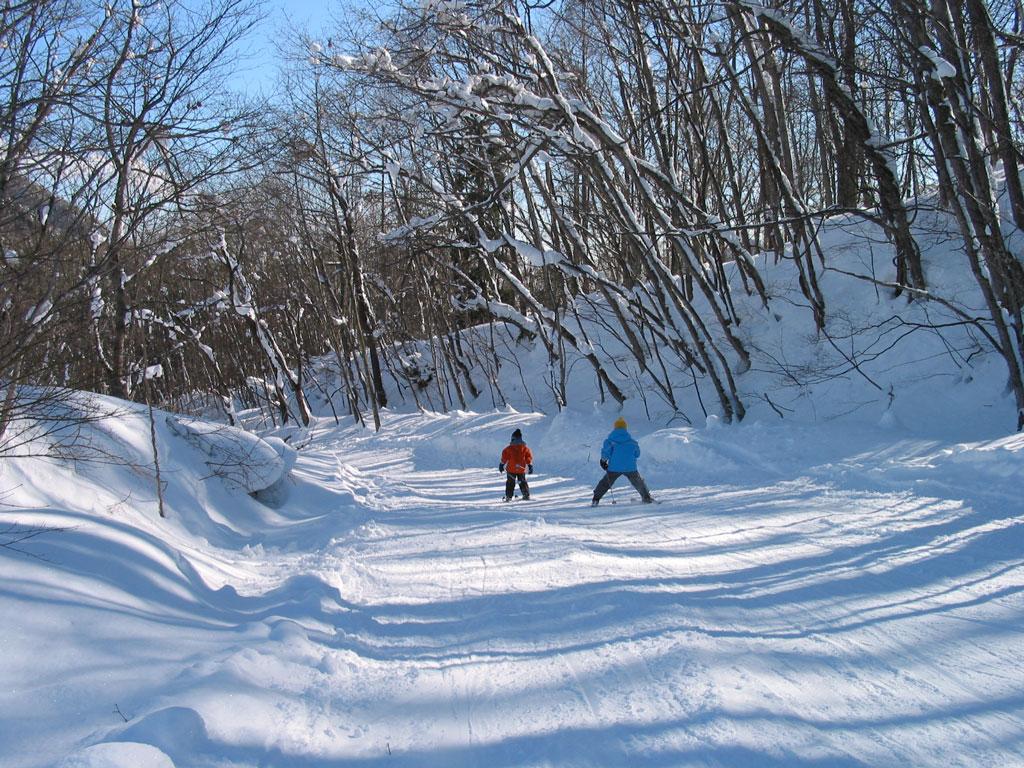 初・中級 林間コース